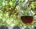 appetizer and dessert wines